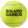Bola Wilson Roland Garros